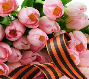 Flowers-Ribbon-Tulips-Wallpaper